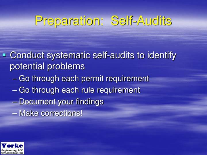 Preparation:  Self-Audits