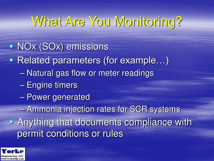 What Are You Monitoring?