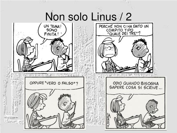 Non solo Linus / 2
