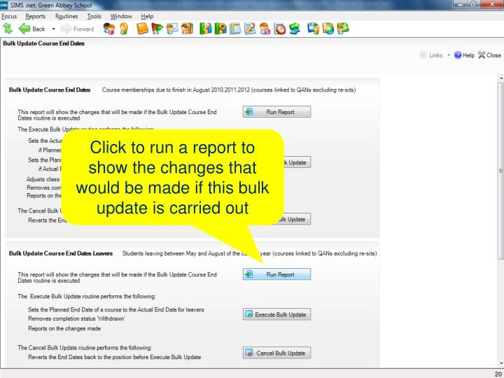 Click to run a report to show the changes that would be made if this bulk update is carried out