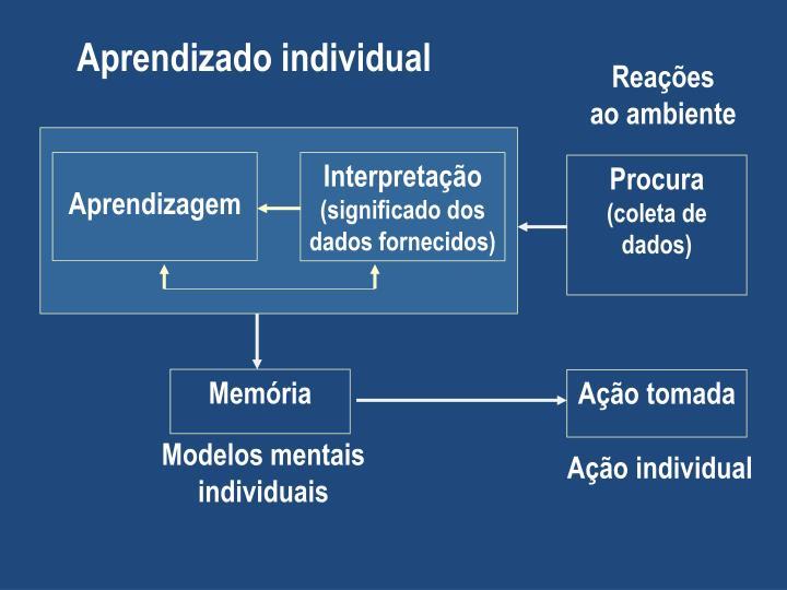 Aprendizado individual