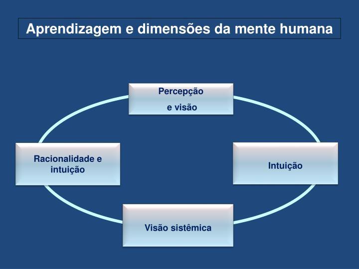 Aprendizagem e dimensões da mente humana