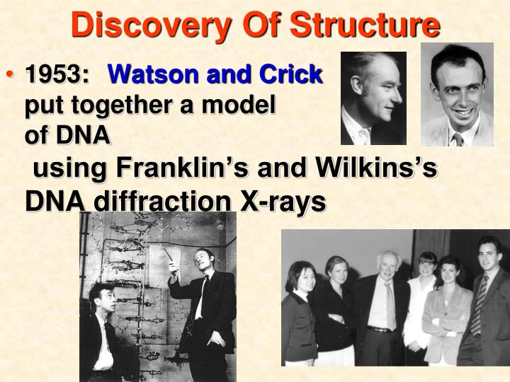 Discovery Of Structure
