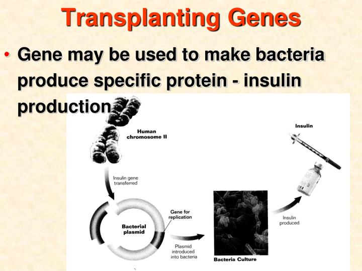 Transplanting Genes