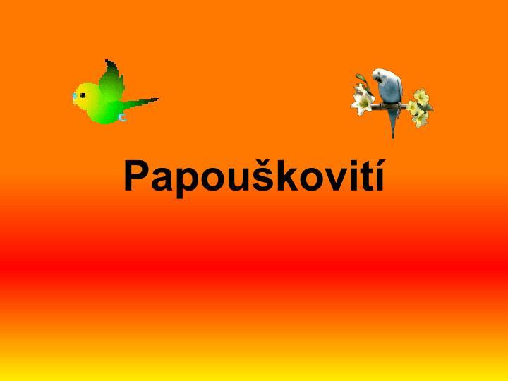Papouškovití
