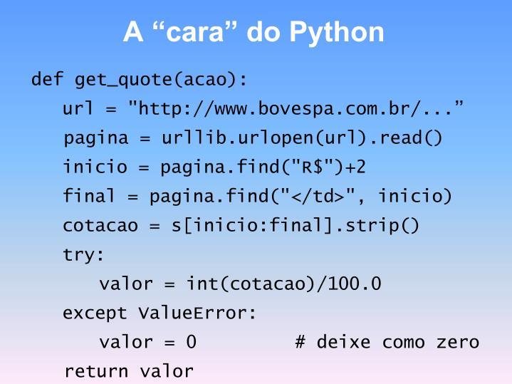 """A """"cara"""" do Python"""