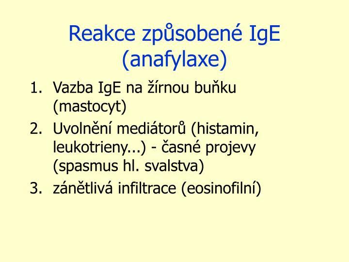 Reakce způsobené IgE (anafylaxe)