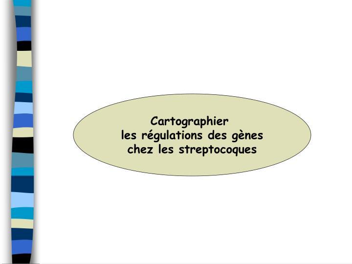 Cartographier