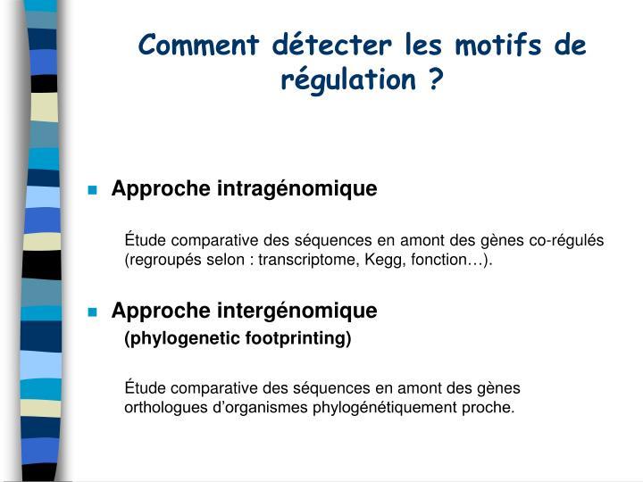 Comment détecter les motifs de régulation ?