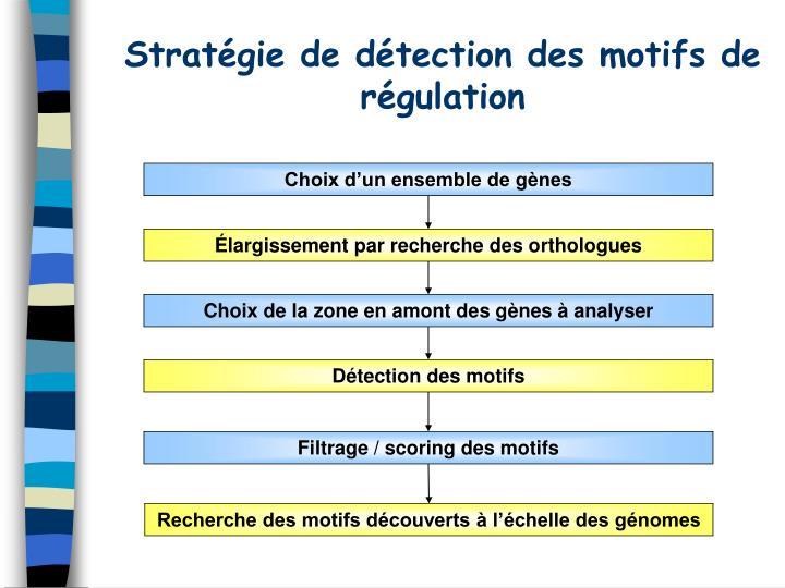 Stratégie de détection des motifs de régulation