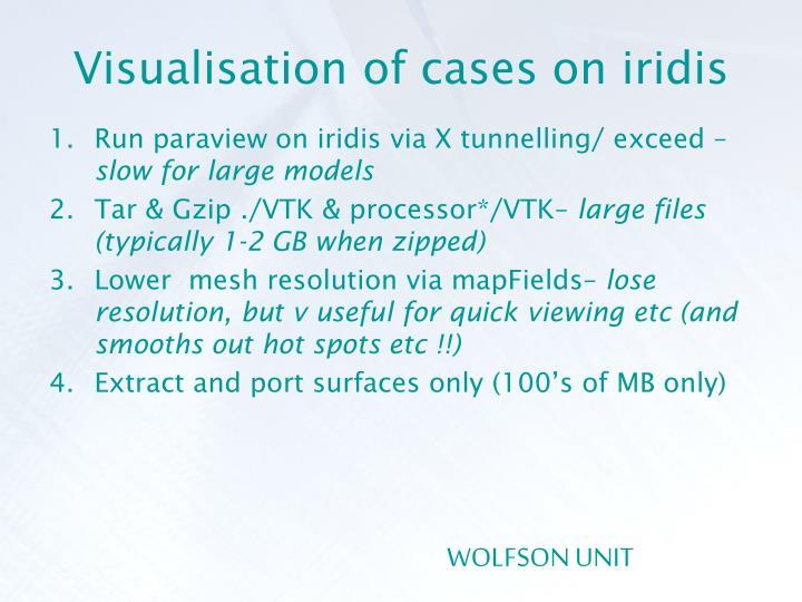 Visualisation of cases on iridis