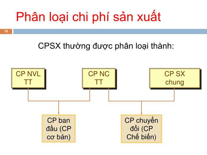 CP ban đầu (CP cơ bản)