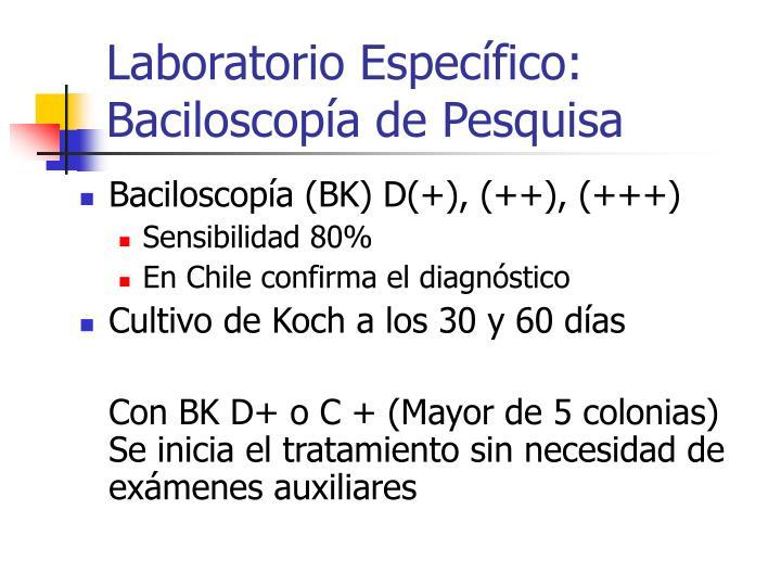 Laboratorio Específico: