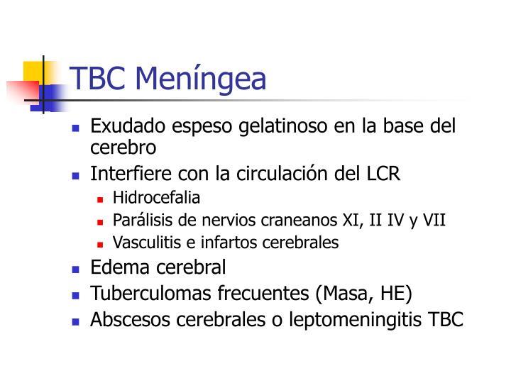 TBC Meníngea