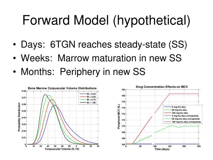Forward Model (hypothetical)