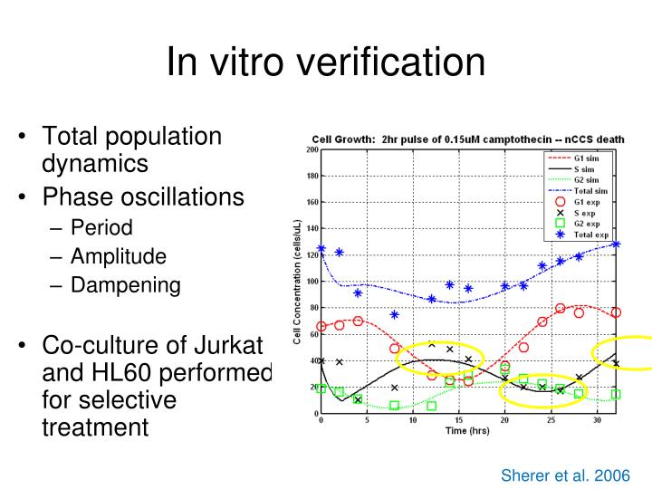 In vitro verification