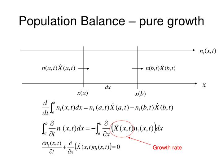 Population Balance – pure growth