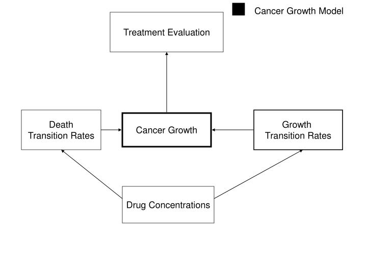 Cancer Growth Model