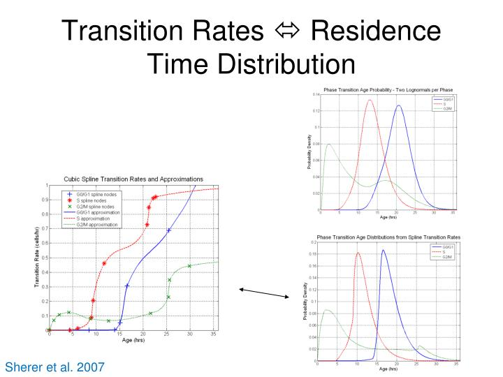 Transition Rates