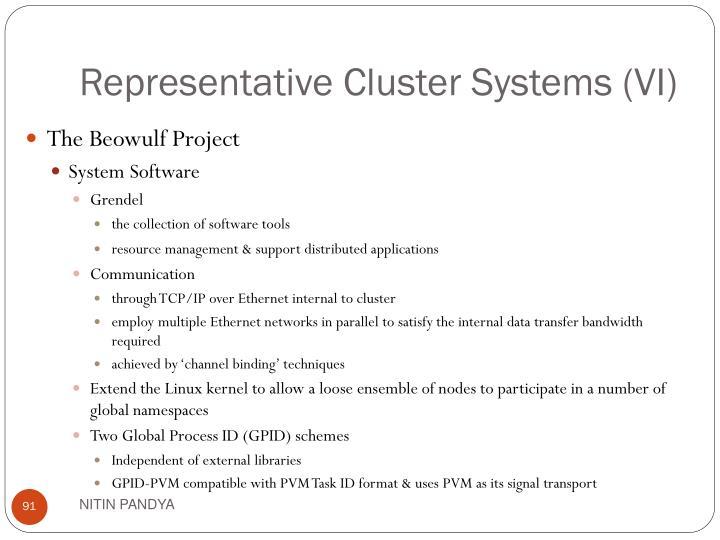 Representative Cluster Systems (VI)