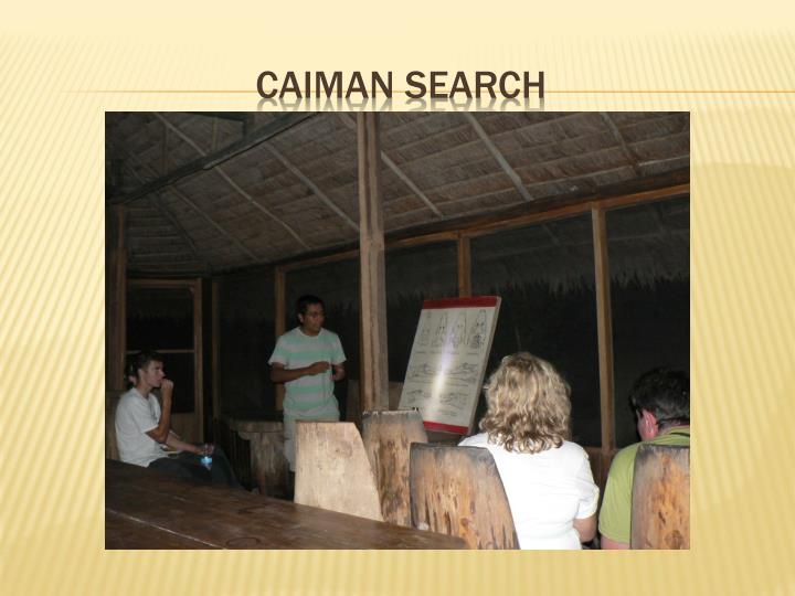CAIMAN SEARCH