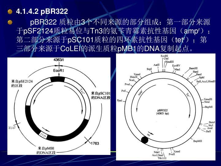 4.1.4.2 pBR322