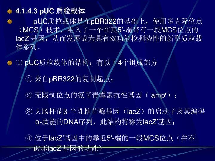4.1.4.3 pUC