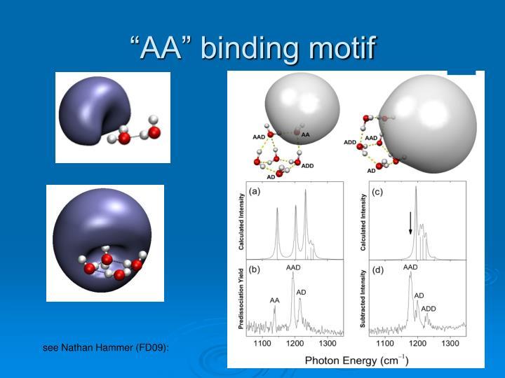"""""""AA"""" binding motif"""