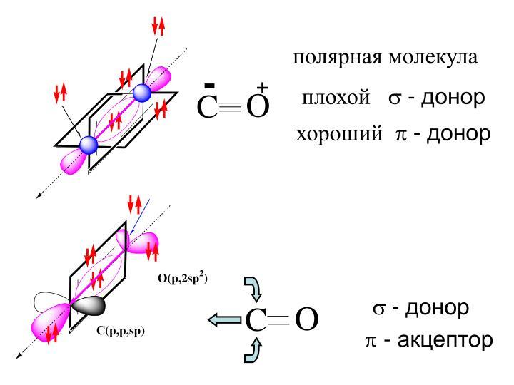 полярная молекула