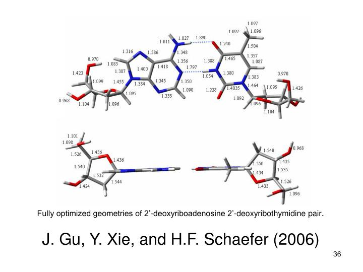 Fully optimized geometries of 2'-deoxyriboadenosine 2'-deoxyribothymidine pair
