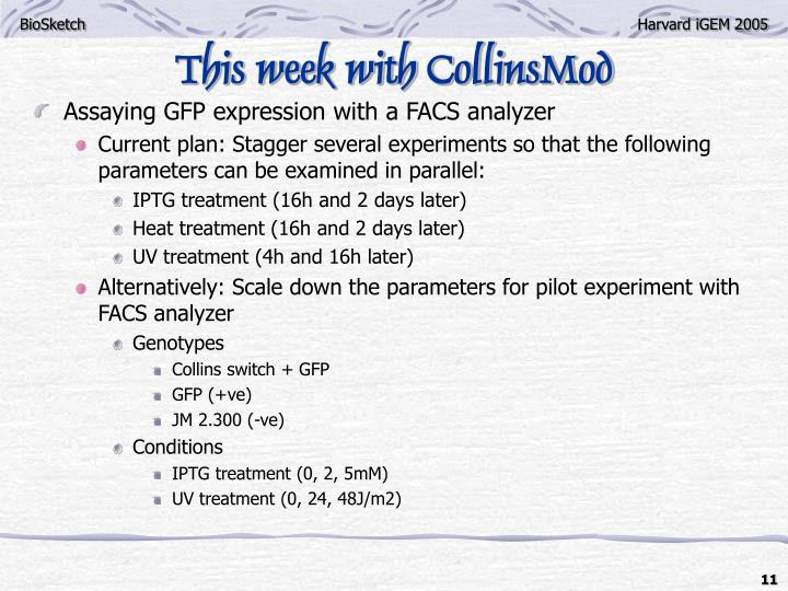 This week with CollinsMod