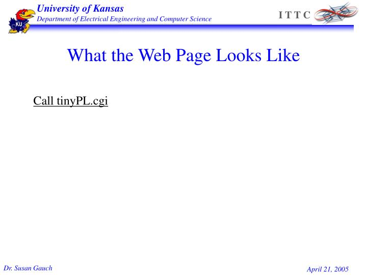 What the Web Page Looks Like