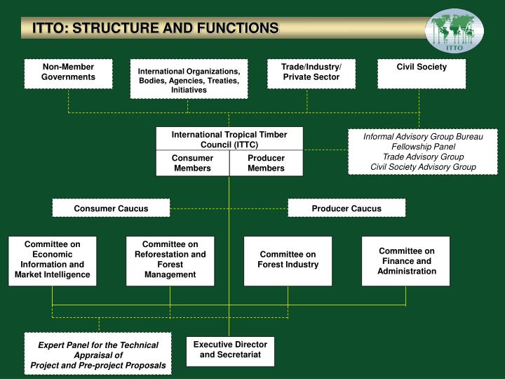 ITTO: STRUCTURE AND FUNCTIONS