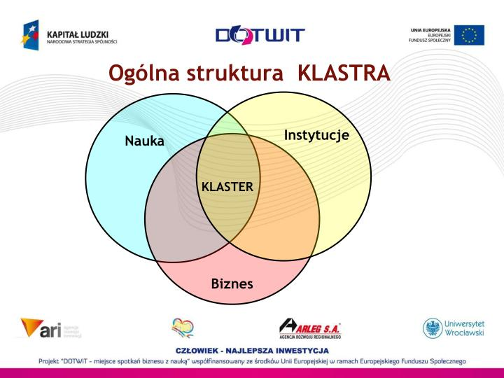 Ogólna struktura  KLASTRA