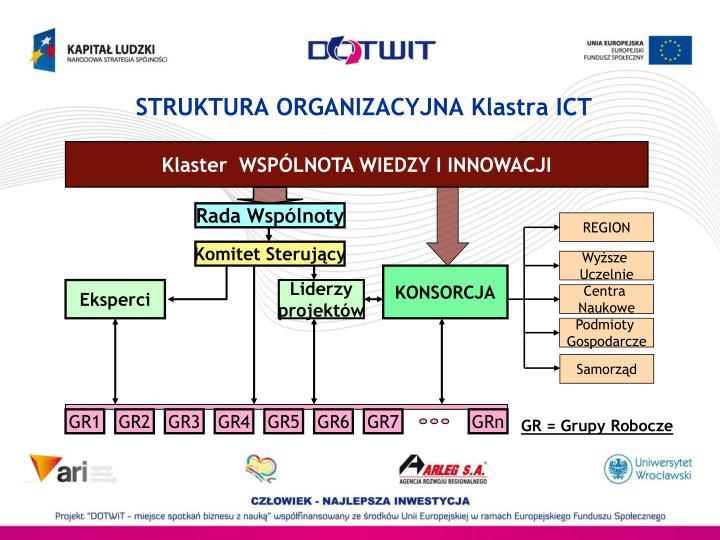 STRUKTURA ORGANIZACYJNA Klastra ICT