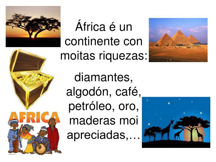 África é un continente con moitas riquezas:
