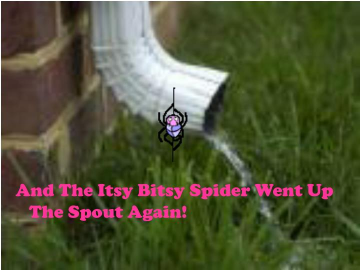 And The Itsy Bitsy Spider Went Up The Spout Again!