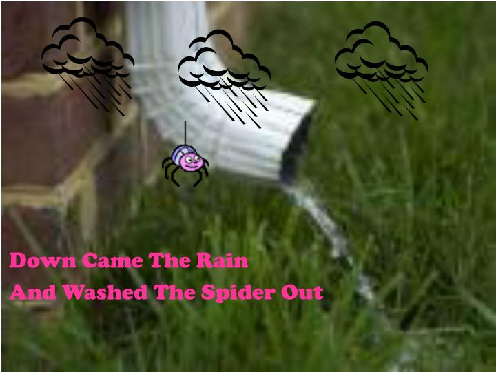 Down Came The Rain