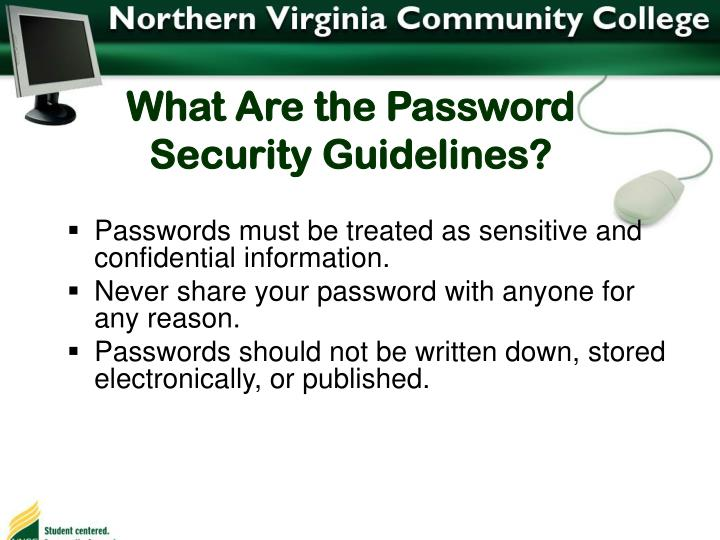 What Are the Password Security Guidelines?