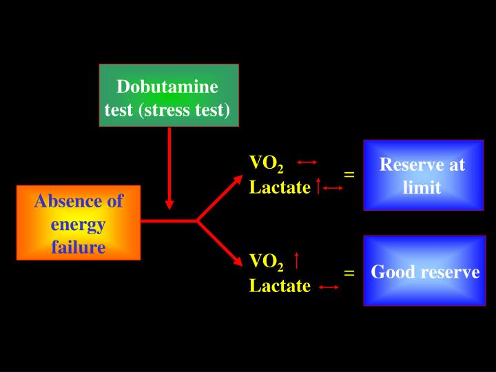 Dobutamine test (stress test)