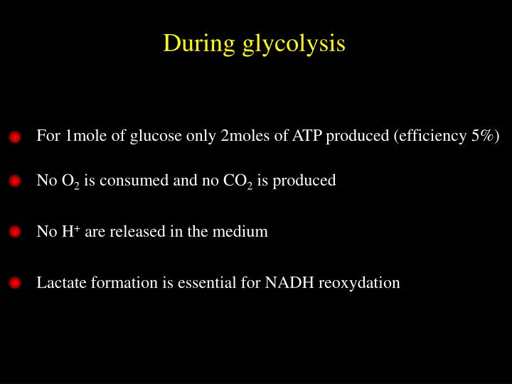 For 1mole of glucose only 2moles of ATP produced (efficiency 5%)