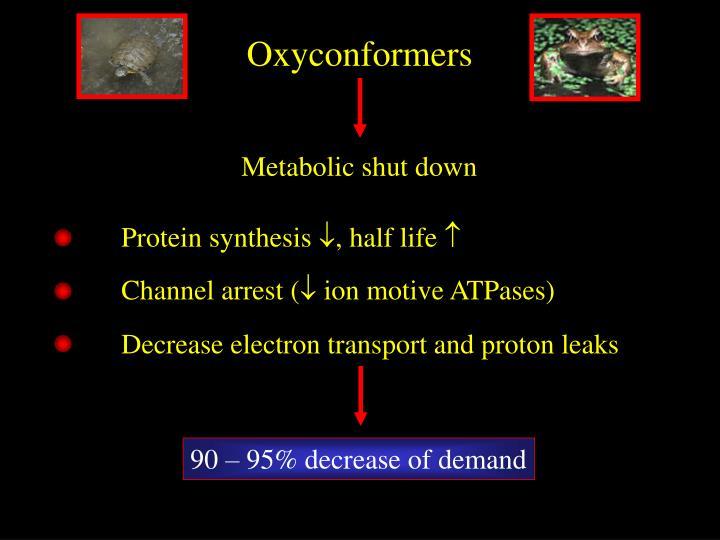 Oxyconformers