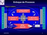 enfoque de procesos1