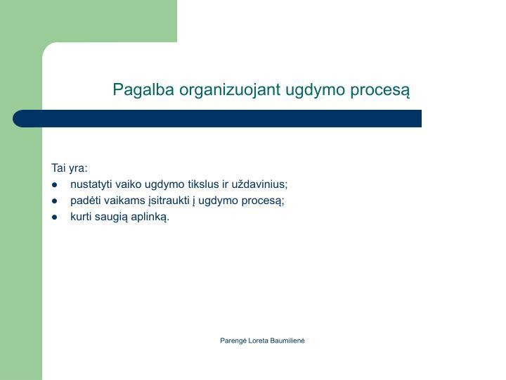 Pagalba organizuojant ugdymo proces