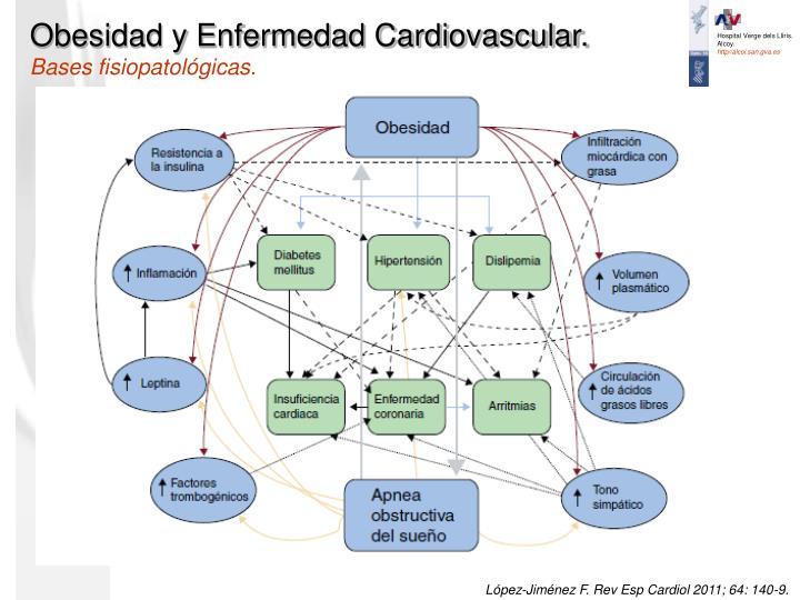 Obesidad y Enfermedad Cardiovascular.