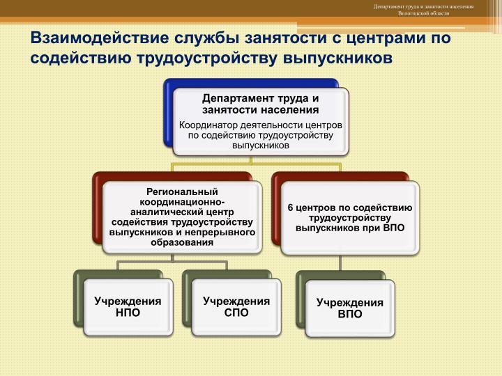 Взаимодействие службы занятости с центрами по содействию трудоустройству выпускников