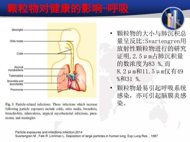 颗粒物对健康的影响-呼吸
