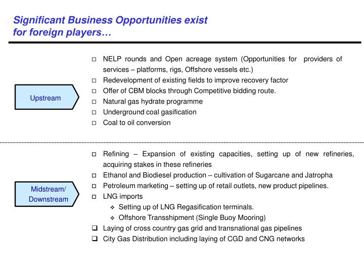 Significant Business Opportunities exist