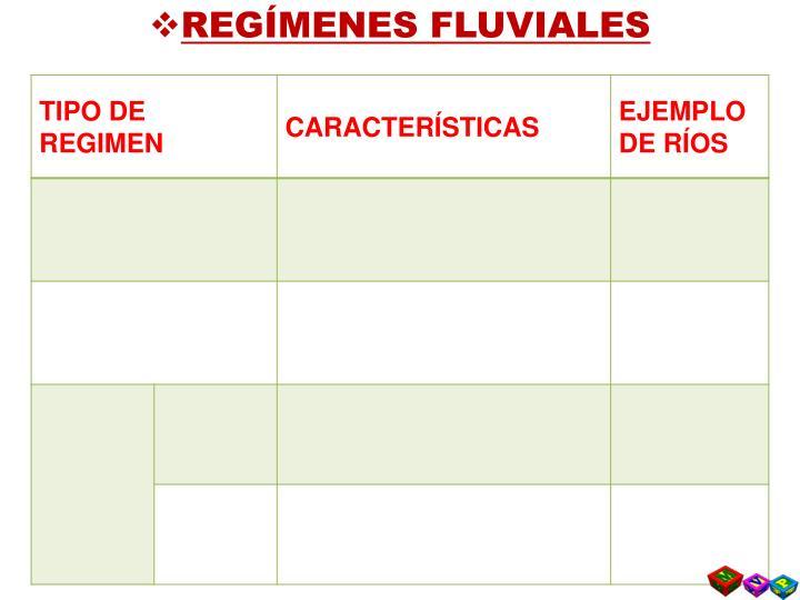REGÍMENES FLUVIALES