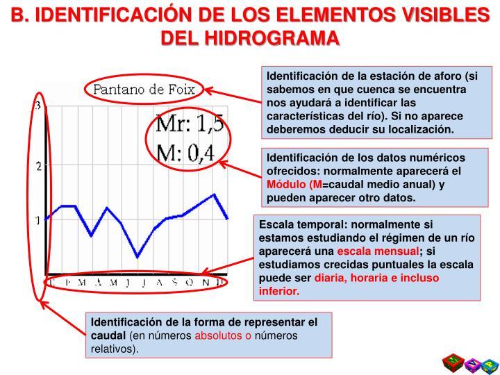 B. IDENTIFICACIÓN DE LOS ELEMENTOS VISIBLES DEL HIDROGRAMA